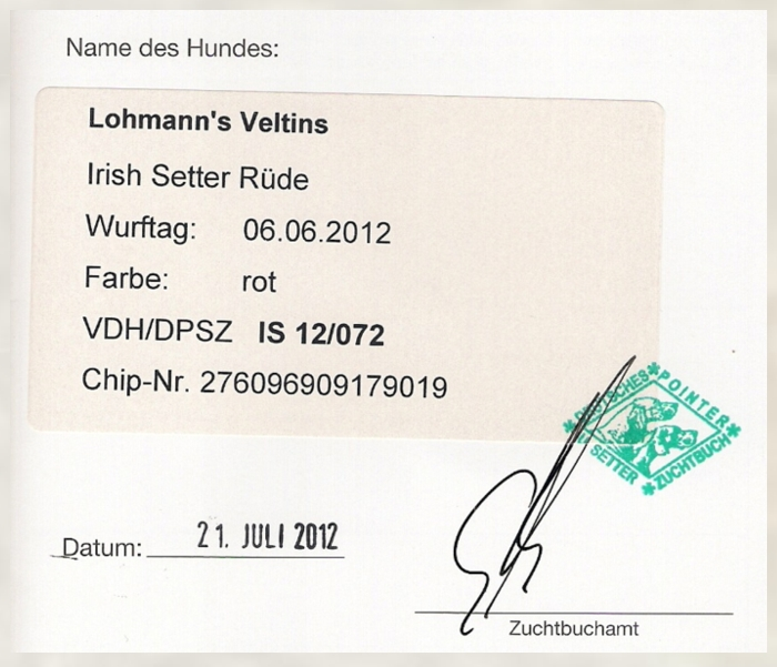Lohmann's Veltins from Germany